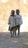Venner. Burkina Faso, 2008