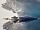 Ismusling. Grønland