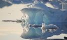 Isslot 5. Grønland