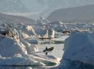 Isfjorden. Grønland