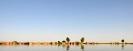 Nigerdeltaet. Mali 2008